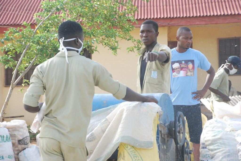 Trainees Thresh Harvest Maize