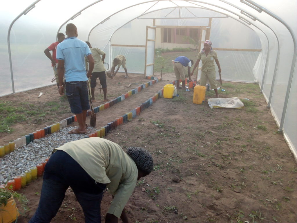 Trainees work in Polytunnel