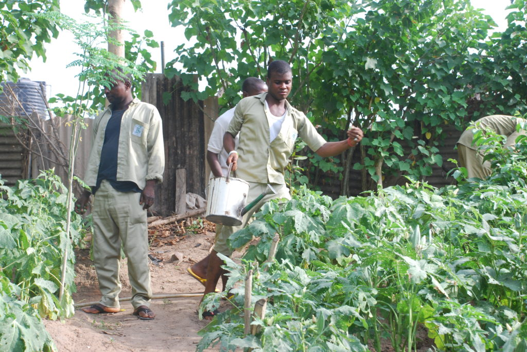 Trainees on Cassava Farm