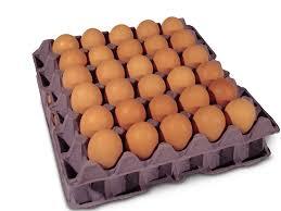 Eggs ( N 900 )