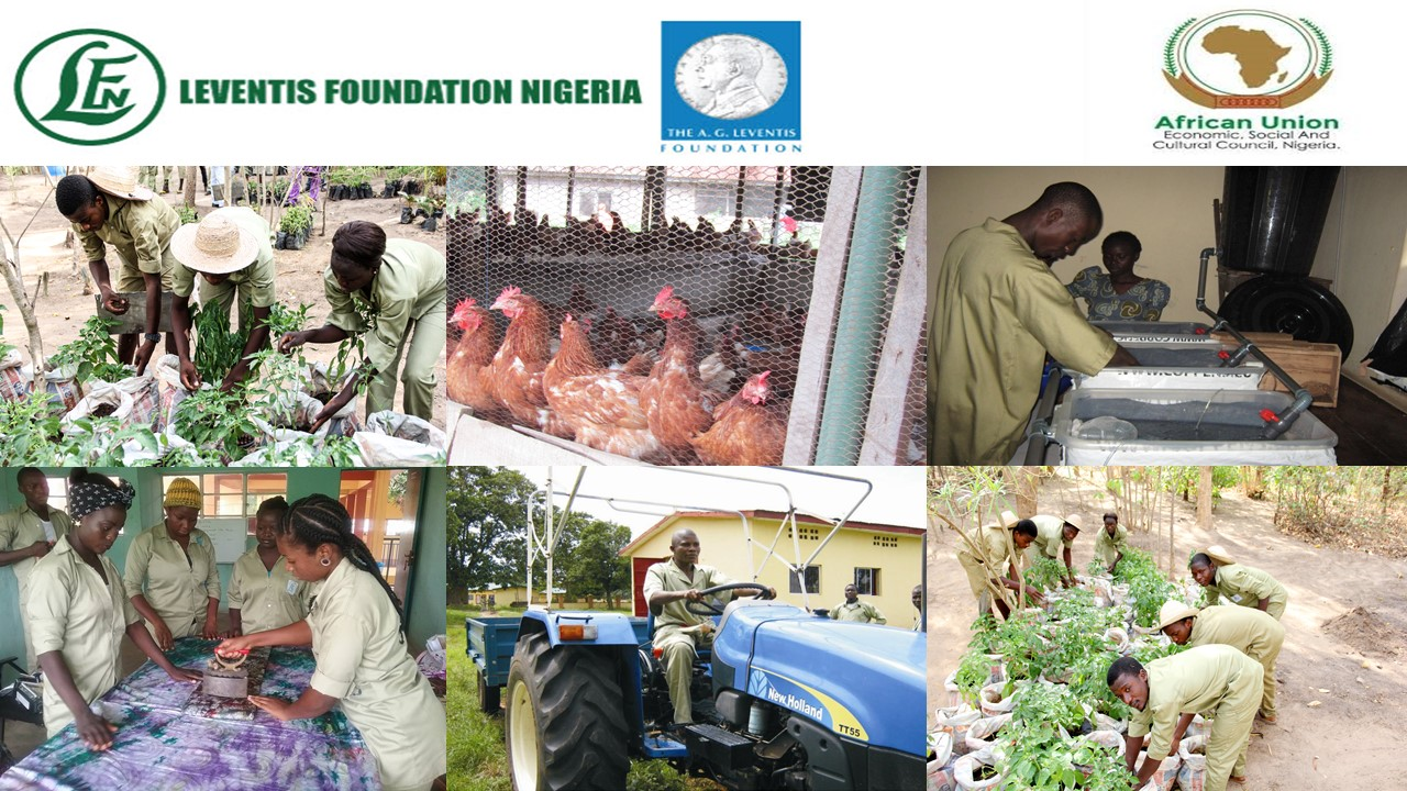 APPLICATION FOR AGRICULTURAL YOUTH SUMMIT GRANT 2020